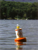 Taylor Made Products  Regulatory Buoy with Solar Powered Lantern Kit